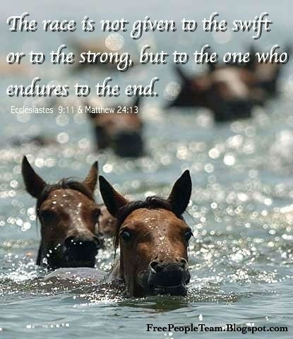 the race is not given to the swift nor the battle to the strong but to those who endure-1